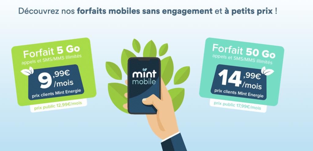 Les deux forfaits Mint mobile